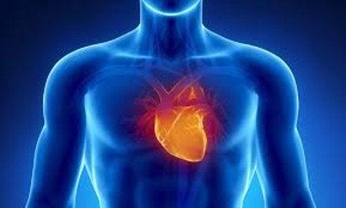 آثار نوبات القلق على القلب