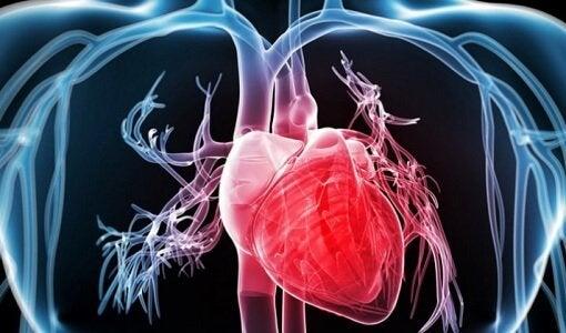 يؤدي اضطراب النظم إلى إبطاء، إسراع، أو حتى إيقاف ضربات القلب