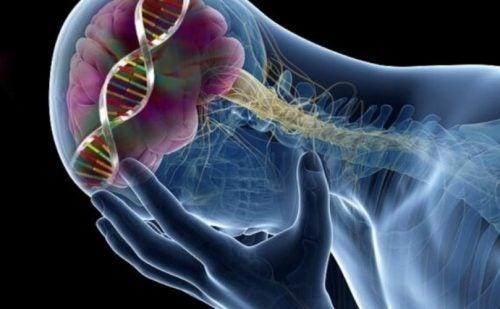 السيروتونين – 9 تأثيرات مفاجئة تظهر بسبب انخفاض مستويات السيروتونين