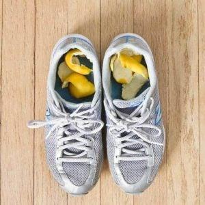 حذاء رياضي موضوع به قشر ليمون للتخلص من رائحة الأحذية الكريهة