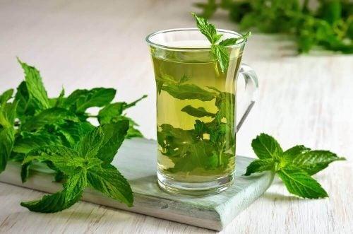 النعناع – اكتشف الخصائص الصحية المتعددة لشاي النعناع