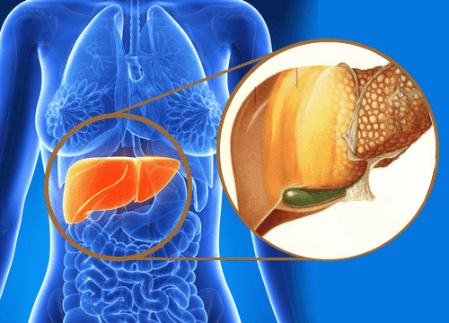 تراكم السموم - 9 علامات تحذيرية تدل على تراكم السموم داخل الكبد