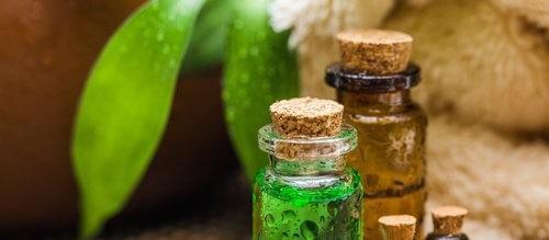 زيت شجرة الشاي – اكتشف معنا الفوائد المتعددة لهذا الزيت المذهل