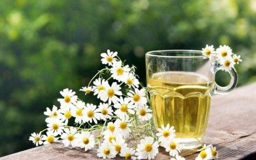 شاي زهرة البابونج و تنظيف القولون