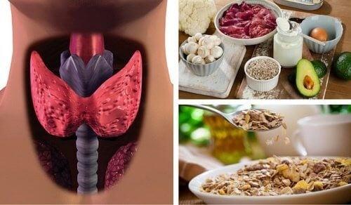 قصور الغدة الدرقية – تغلب على خمول الغدة الدرقية بهذه الأطعمة