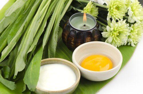مواد طبيعية تستخدم لعمل أقنعة للبشرة بهدف شد ترهل الثدي