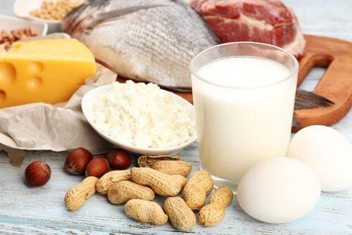مجموعة من الأطعمة التي تحتوي على البروتين
