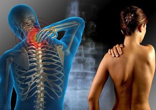 آلام العضل الليفي نتيجة إستهلاك الأغذيؤة التي تحتوي على الجلوتين