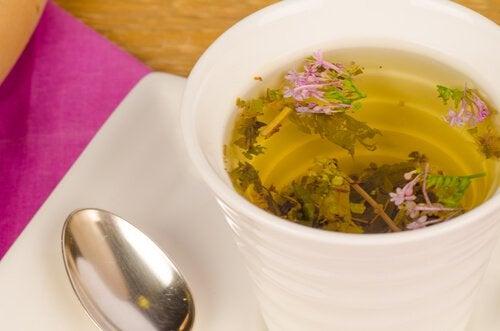 كوب من شاي عشبة الناردين