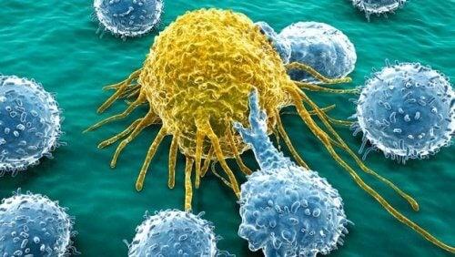 عدد من الخلايا السرطانية