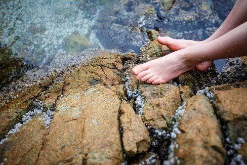 وضع الأقدام في مجرى نهري