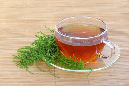 فنجان من شاي ذنب الحصان