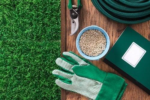 أدوات لزرع القرفة المنزلية