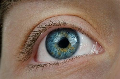 عين زرقاء