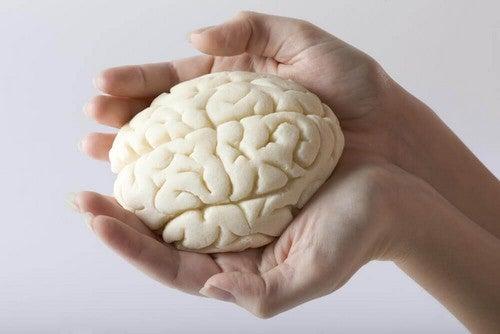 تمارين الذاكرة – التمارين ليست لأجسادنا فقط، تعرف معنا على أفضل 5 تمارين للذاكرة