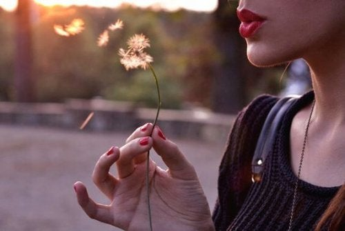 قوانين الحياة – لتحصل على حياة متناغمة، إليك أهم ثلاثة قوانين للحياة