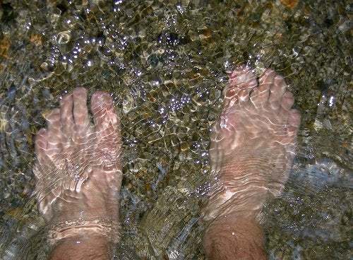 أقدام