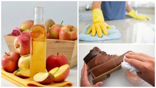 استخدامات خل التفاح - 7 من أفضل استخدامات خل التفاح في المنزل