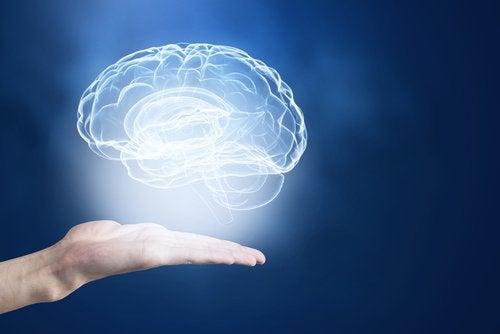 تقوية الذاكرة - اكتشف هذه الحيل المذهلة لتقوية ذاكرتك وتنشيط دماغك