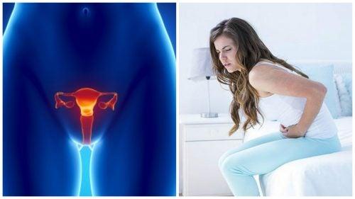 سرطان المبيضين – 7 معلومات مهمة تحتاجين إلى معرفتها