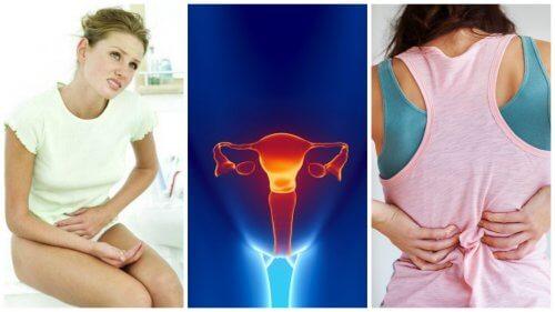 مرض سرطان عنق الرحم – 8 علامات رئيسية تنذر بإصابة السيدات بسرطان عنق الرحم
