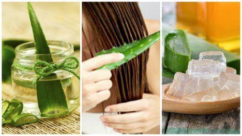 علاجات الألوة فيرا – 5 علاجات تساعدك على تعزيز شعرك