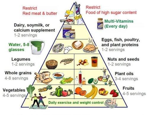 الهرم الغذائي الجديد - مفتاحك لحياة صحية ذات جودة أعلى