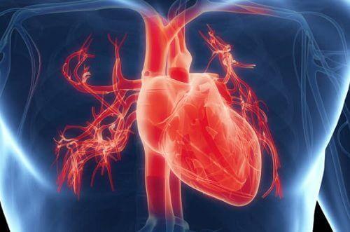 مشاكل القلب – 7 من الأعراض الشائعة التي تشير إلى إصابتك بمشكلات القلب