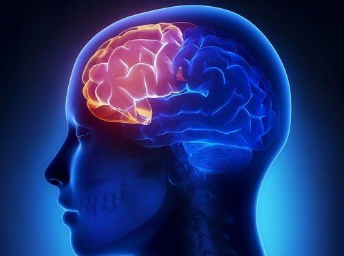 القدرات الذهنية - 4 تمارين تساعدك على الحفاظ على قدراتك الذهنية مع التقدم في السن