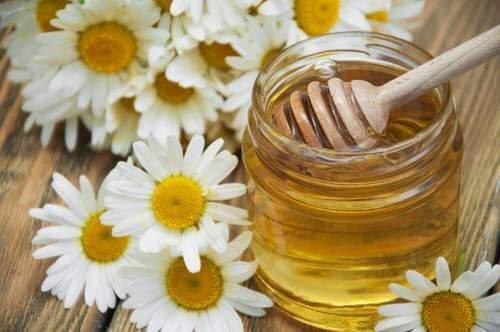 الكاموميل والعسل