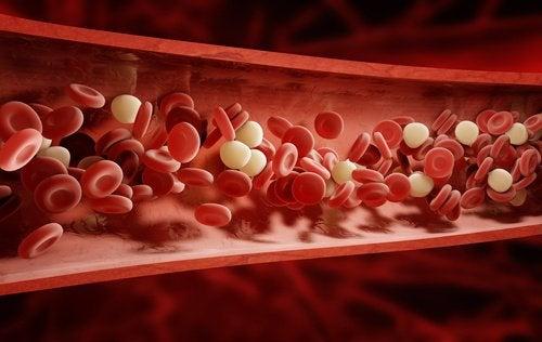 تحسين تدفق الدم