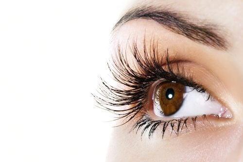 رموش طويلة وكثيفة - بلسم طبيعي يساعدك على تطويل رموشك وزيادة كثافتها