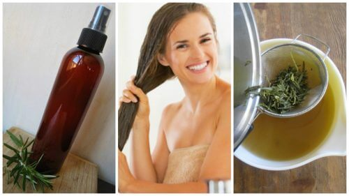 مرطب الشعر العشبي - عززي شعرك مع وصفة مرطب الشعر العشبي الطبيعي