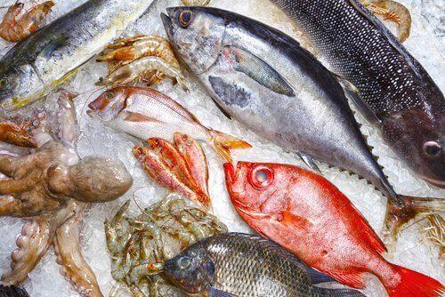 الأسماك غير الصحية - 9 أنواع يُفضل تجنبها للحفاظ على الصحة
