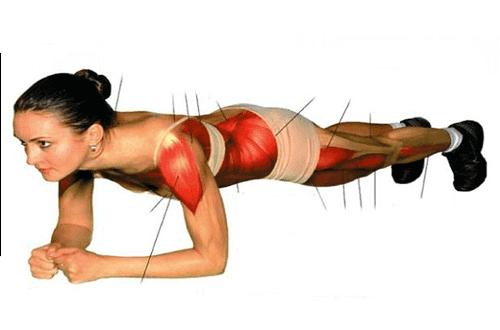 تمرين بلانك المعكوس لحرق الدهون وتحسين وضعية الجسد