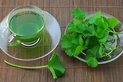 شاي الكرفس لعلاج مشكلة ارتفاع ضغط الدم