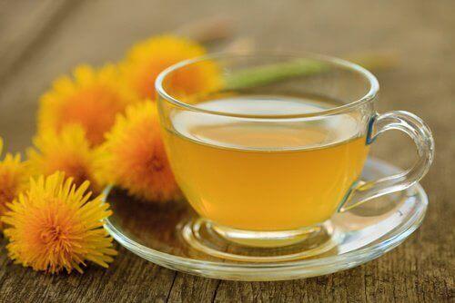 فنجان من شاي الهندباء البرية