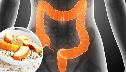 متلازمة القولون المتهيج – نصائح غذائية تساعدك على مواجهة حالة القولون العصبي