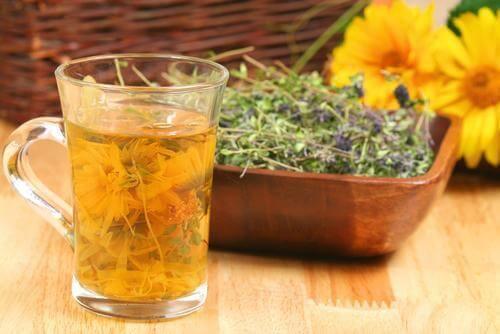 4 من مشروبات الأعشاب التي ستساعدك على تنقية جسدك