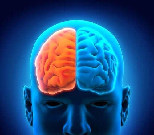 كيف يؤثر الاكتئاب فسيولوجيًا على الدماغ