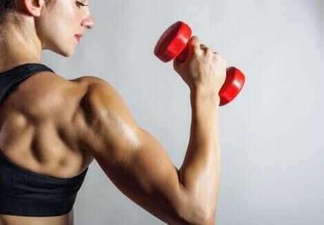 التهاب أوتار العضلات