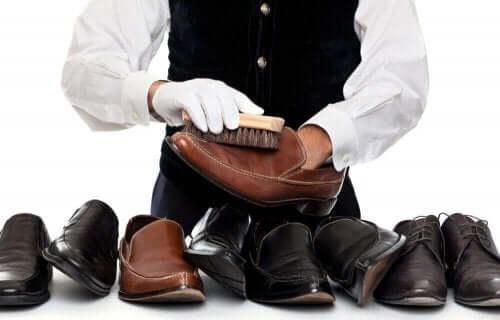 تفريش الحذاء