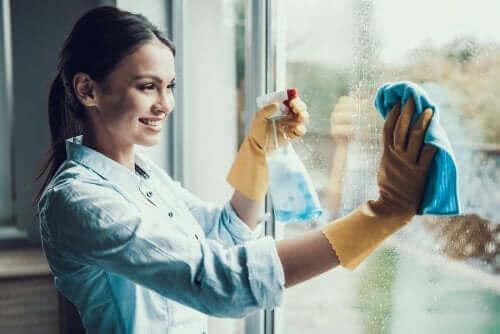 منظف الزجاج طارد حشرات