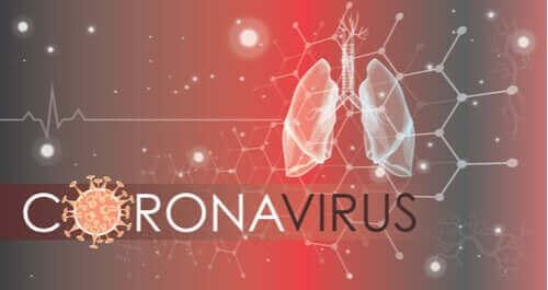 كيف يهاجم فيروس كورونا المستجد خلايا الرئة