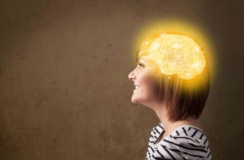الحميات قليلة النشويات والأداء العقلي