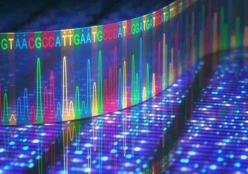 أين تحدث الطفرات الجينية؟