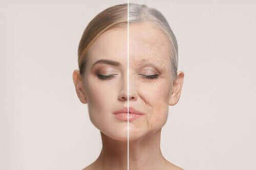 عملية الشيخوخة