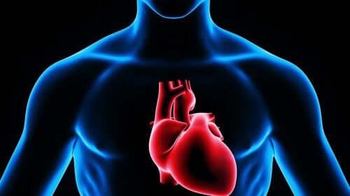 كيفية استخدام الحقن القلبية