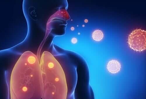 ثلاثة بدائل طبيعية لتخفيف أعراض الإنفلونزا