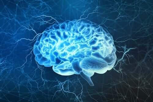 التأثيرات العصبية لفيروس كورونا المستجد: آخر الاكتشافات